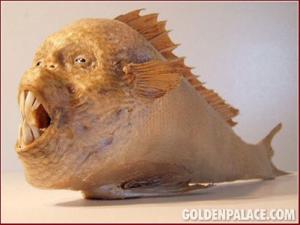 humanfish2